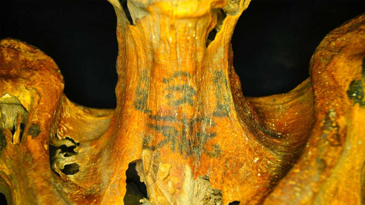 Los ojos 'wadjet' son posibles símbolos de protección contra el mal que adornan el cuello, los hombros y la espalda.