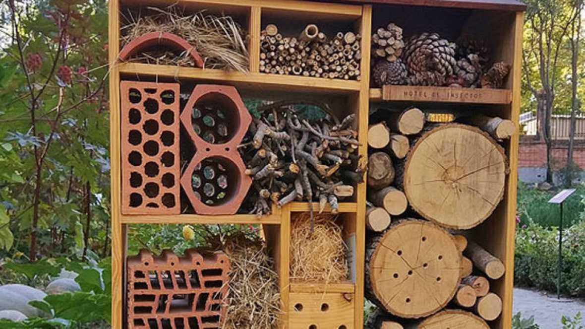 El jard n bot nico de madrid construye un hotel para que for Insectos del jardin