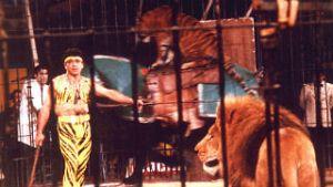 Fotograma de Especial Reyes. Circo sobre hielo de Ángel Cristo y Bárbara Rey