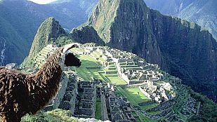 Video Latinoamérica salvaje: Los Andes, el mundo en las nubes