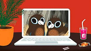 Video The bird hunt