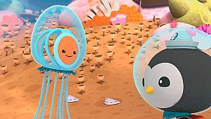 Video The immortal jellyfish