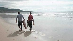 Video Playa de Bolonia