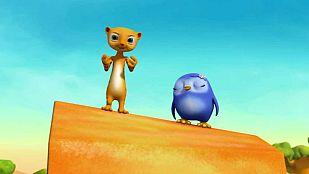 Video Meerkat mystery