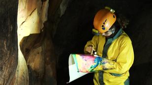 Video La Cueva de la Pileta