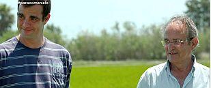 Tomás y Jordi Magalaf, agricultores, 40 años cultivando arroz en el delta del Ebro