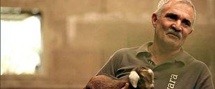 """""""Soy cabrero. Voy a terminar mi vida laboral con mis cabras y mis animalitos que es lo que me gusta"""""""