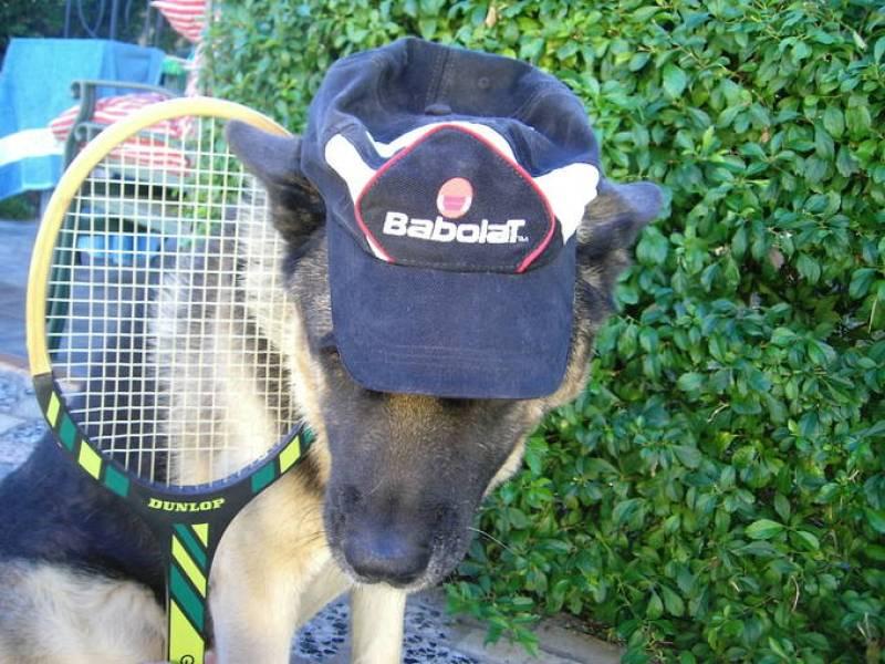 Manda tu mejor foto de tenis.
