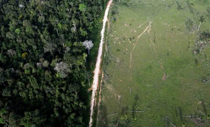 Vista aérea que muestra la deforestación ilegal cerca del Parque Nacional de la Amazonia en Itaituba. 25 de mayo 2012