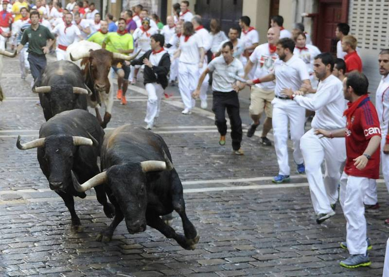 Los toros de Conde de la Maza han corrido por segunda vez en Pamplona