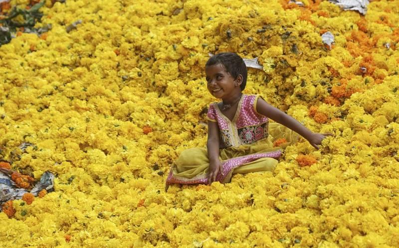 Una niña juega sobre un montón de claveles