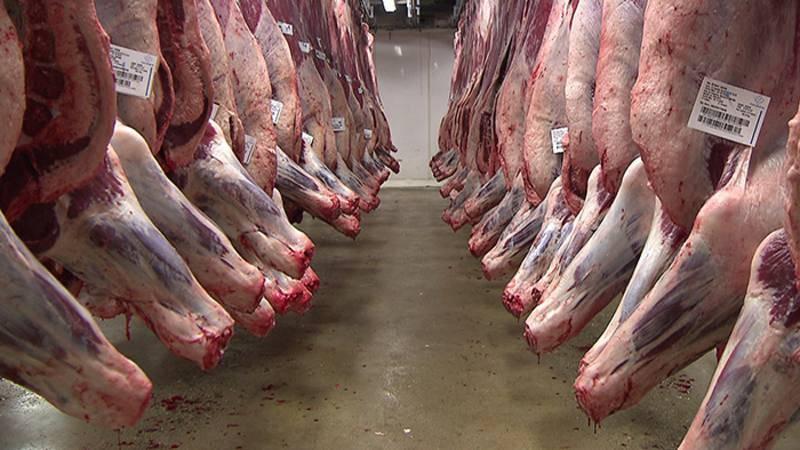 Carne de ternera en las cámaras frigoríficas de Mercabarna