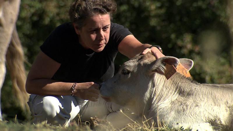 Fernanda establece una relación personal con los animales