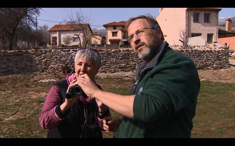 Buscando cigüeñas en Pinilla del Valle, Madrid