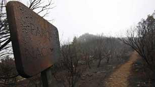 El incendio de la Gomera ha afectado a más de 3.000 hectáreas.