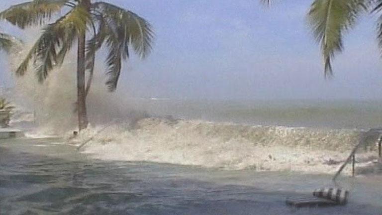 Se cumplen 8 años del tsunami en el océano Índico que arrasó las costas de quince países