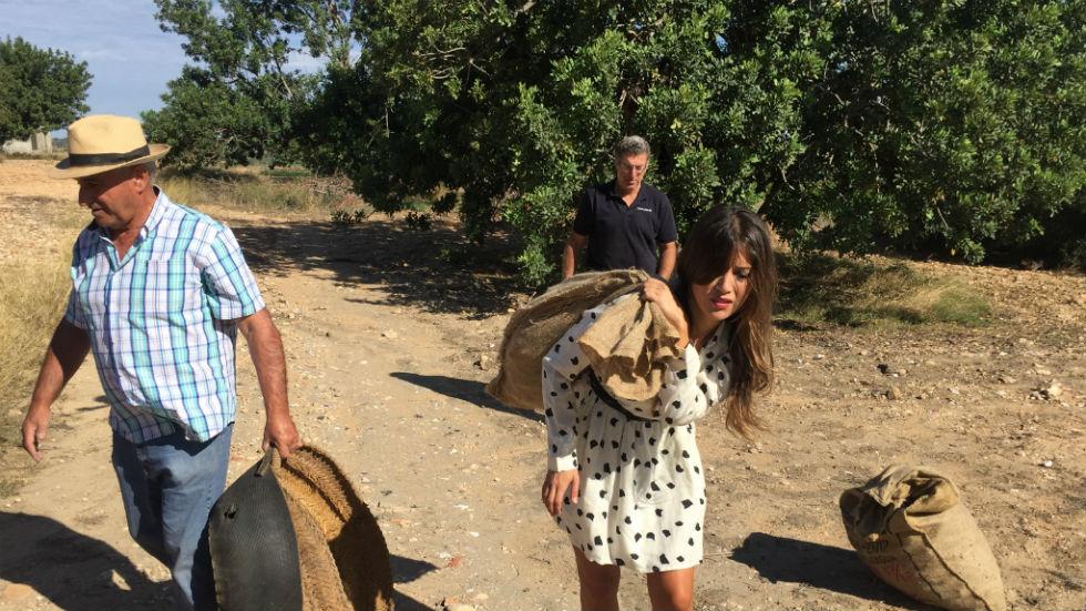 Adopta a Marta: día de cosecha