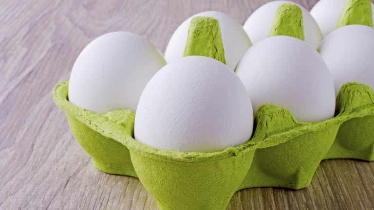 Saber vivir - Alimentos contaminados en verano