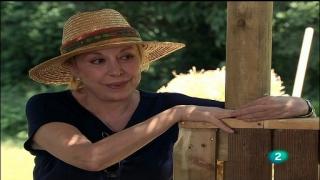 Abuela de verano - A de animales