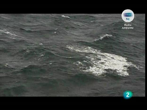 Crónicas - Antártida, continente para la ciencia (I parte)