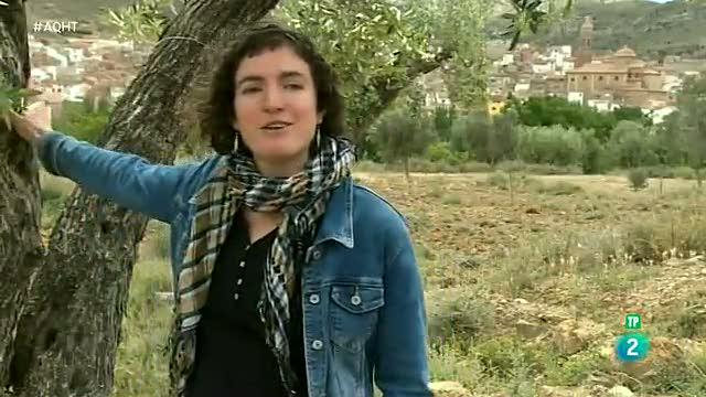 Apadrina un olivo, una colmena... llega el crowdfarming