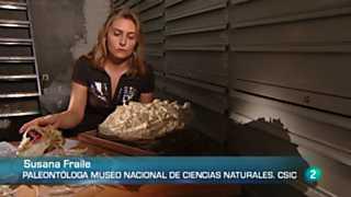 Crónicas - Batallones: en busca del pasado