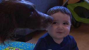 Los bebés que conviven durante el primer año de vida con perros o gatos crecen más sanos