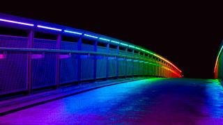 BioLED, la nueva generación de la iluminación