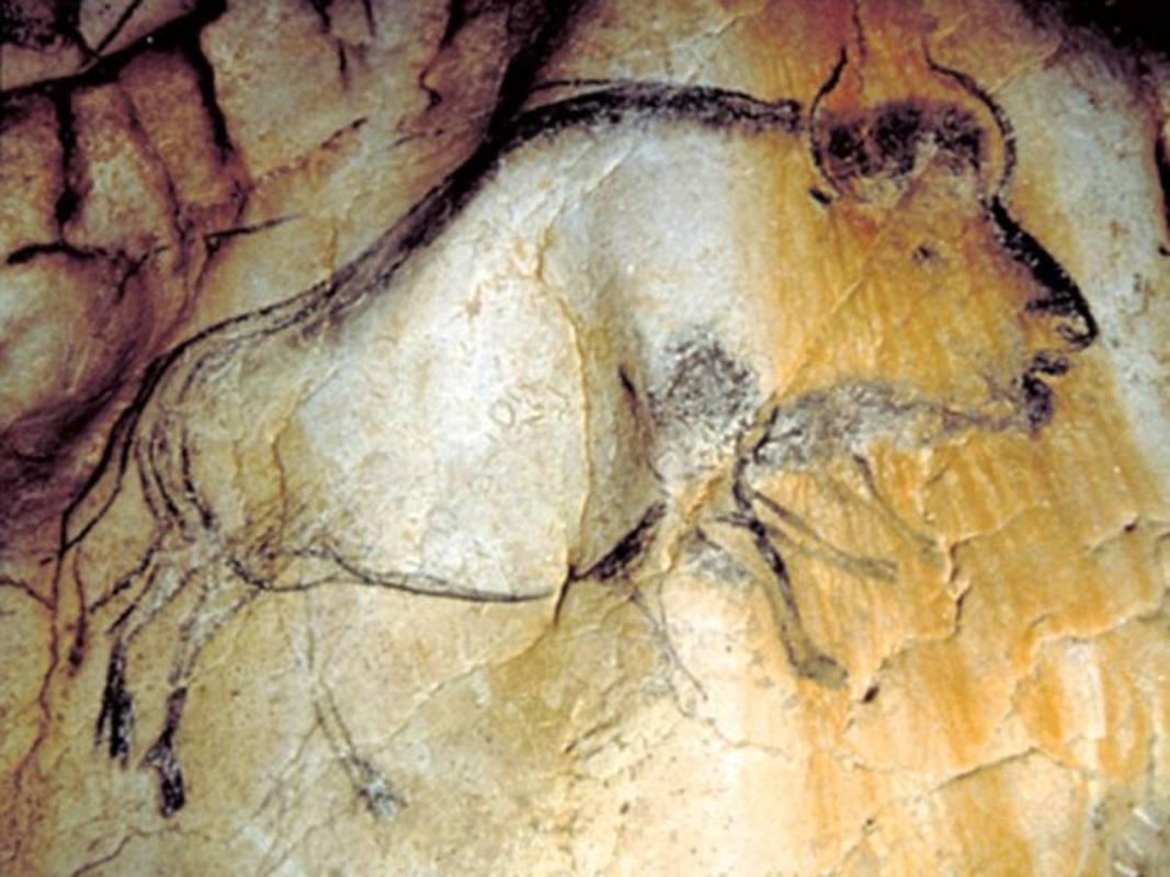Bisonte de ocho patas en la cueva de Chauvet