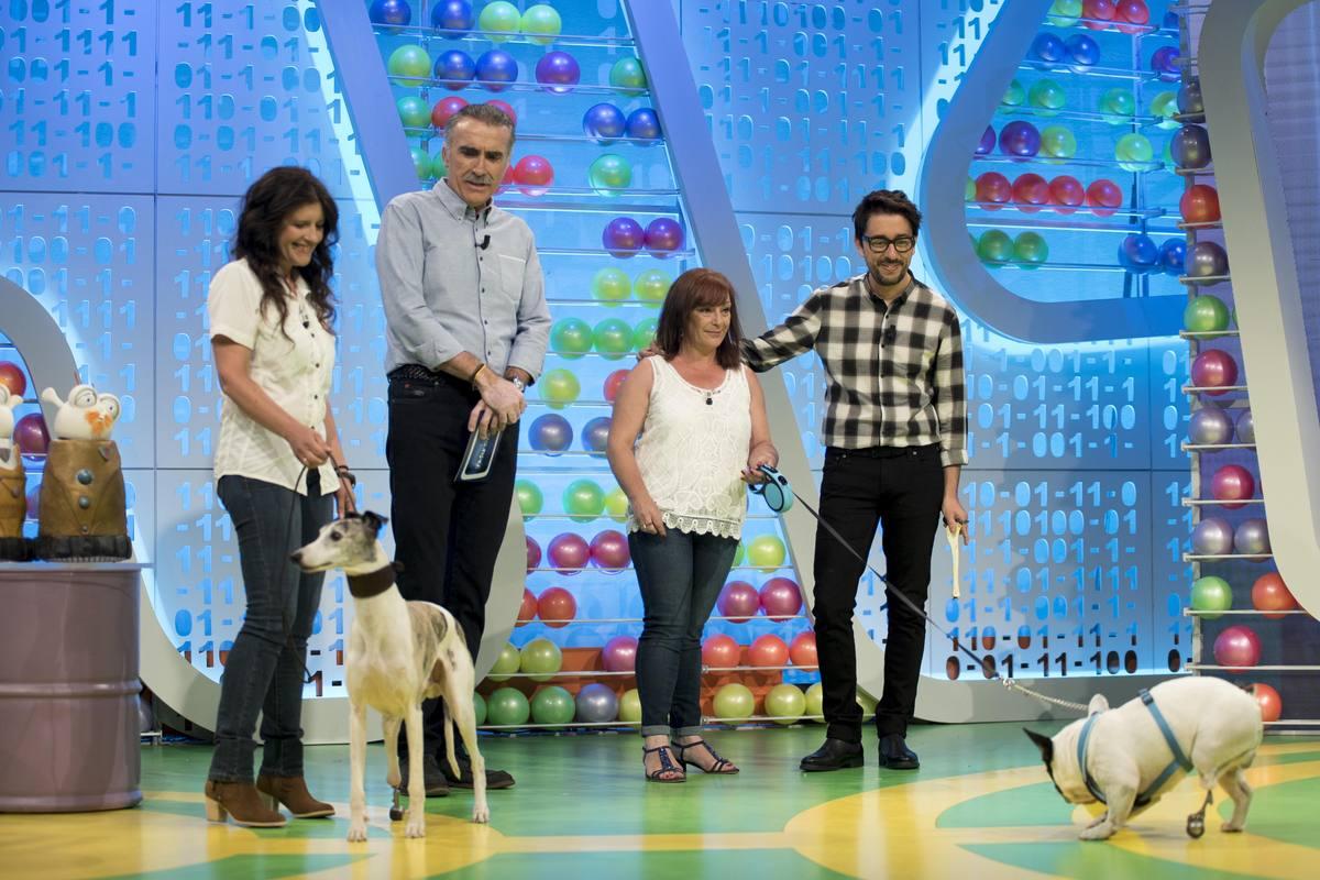 Buddy y Runner, dos perros  muy especiales, son los invitados en la sección de Flipy