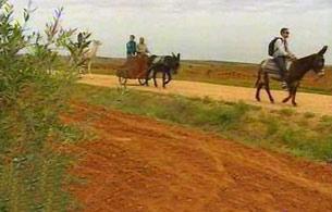 España Directo - En burro por Aceuchal