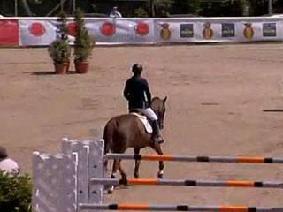 Campeonato de España de salto de obstáculos 2011