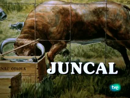 Juncal - Capítulo 2
