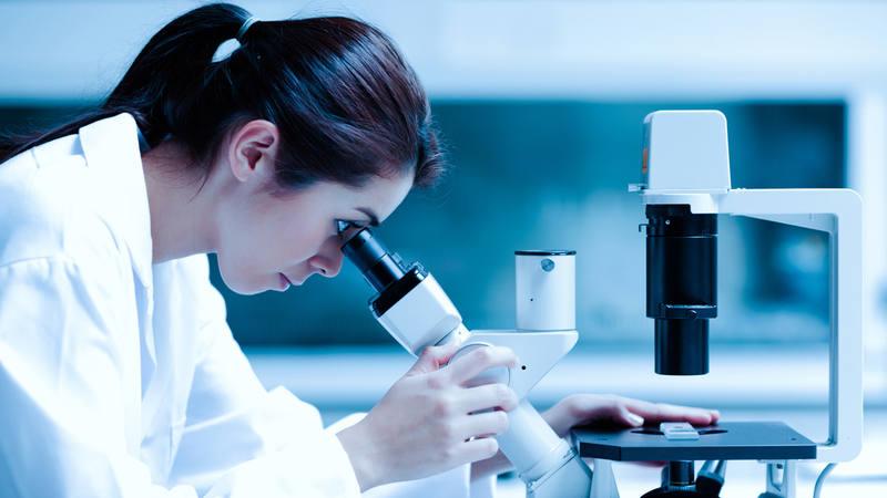 En la carrera investigadora, cuanto mayor es el grado de responsabilidad, mayor es el sesgo de género.