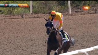 Turf - Carreras de caballos