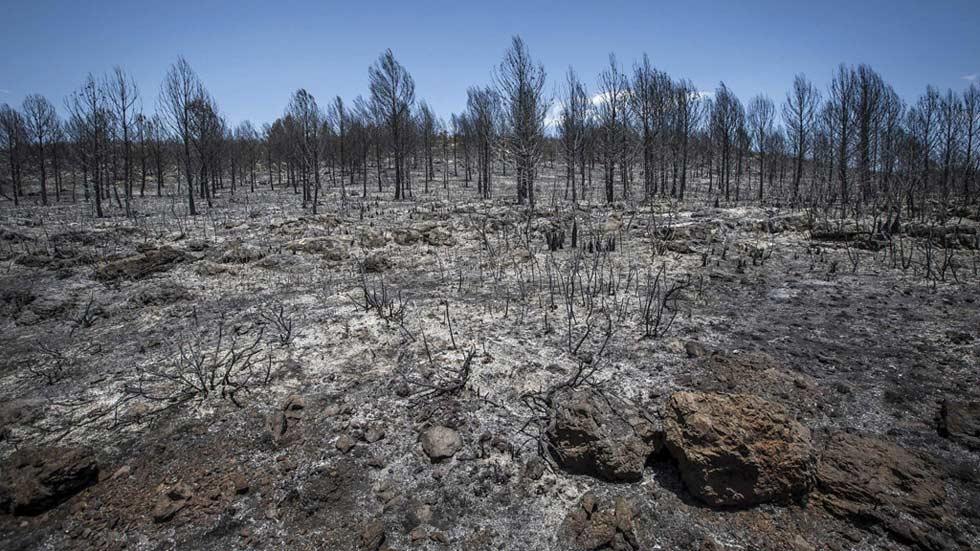 Comiezan a volver a sus hogares los vecinos afectados por los incendios en Carcaixent