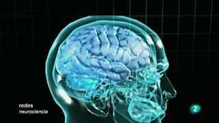 Redes - Cómo se conectan las neuronas V.O