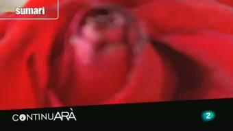 Continuarà - 29/05/2012