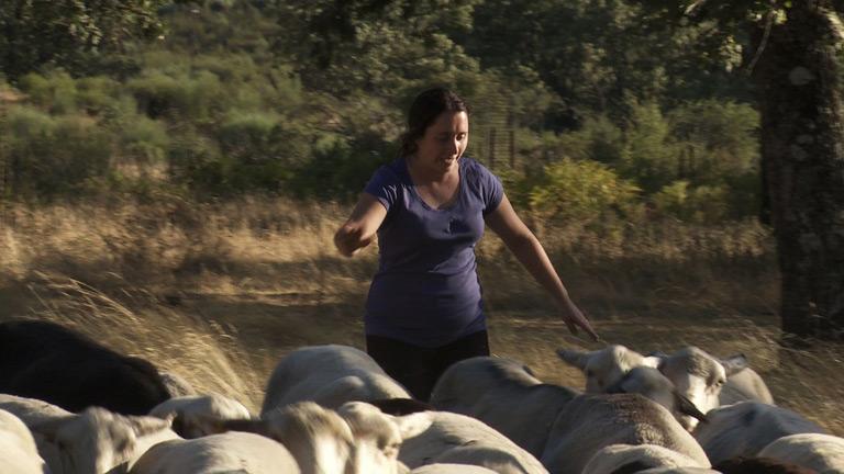 Convive - Capítulo 1 - Blanca intenta demostrar que pastorear las ovejas es fácil
