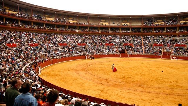 Córdoba albergará la Davis