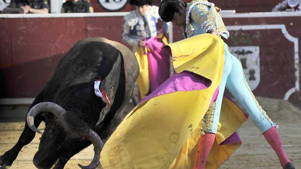 Corrida Benéfica de Asprona de Albacete, con Miguel Ángel Perera Gracias a TVE