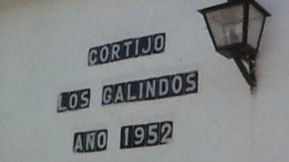 Fue informe - El crimen de los Galindo (1981)
