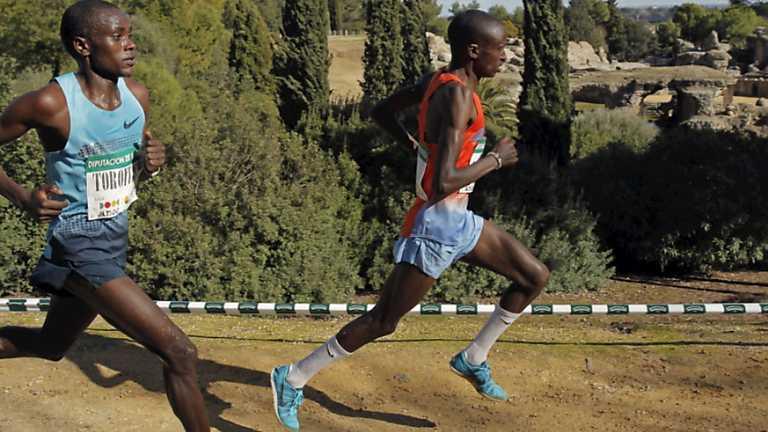 Atletismo - Cross de Itálica. Carrera masculina