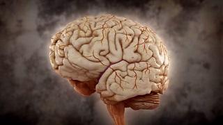 Desafía tu mente - ¿Cuánto tiempo necesita el cerebro para pensar?