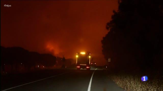 Los daños medioambientales del incendio de Moguer