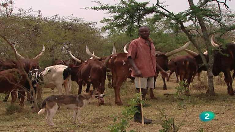 Otros pueblos - Del Nilo Blanco al reino Ankole (Uganda II)