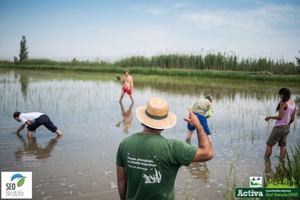 Red Natura 2000 - Delta del Ebro - Avance