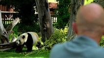 Antonio Lobato visita el zoo de Madrid
