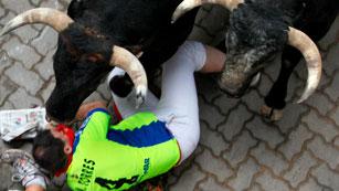 Dos corredores de verde a punto de ser embestidos por los toros de Miura