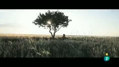 Días de cine: 'Amor verdadero''
